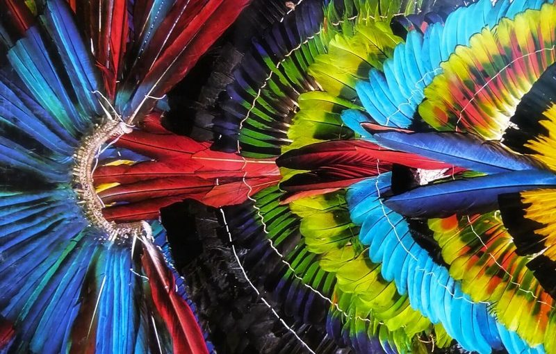 Amérique du Sud : à chacun son itinéraire avec Oceania Cruises