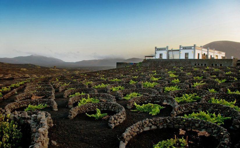 Offrez-vous une croisière de prestige à destination des îles Canaries !