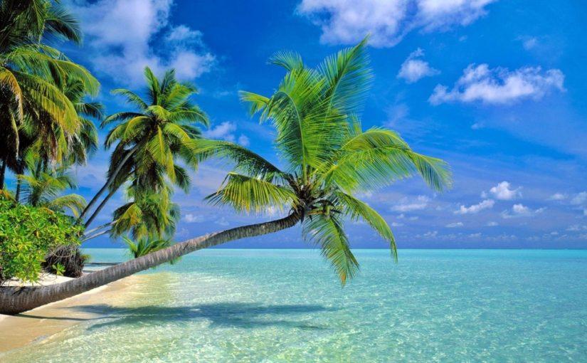 Le Paradis vous Attend dans les Îles du Bout du Monde !