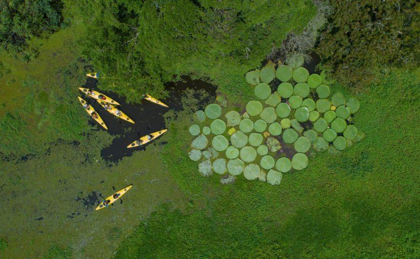 L'Amazonie à bord d'une Croisière prestigieuse Seabourn