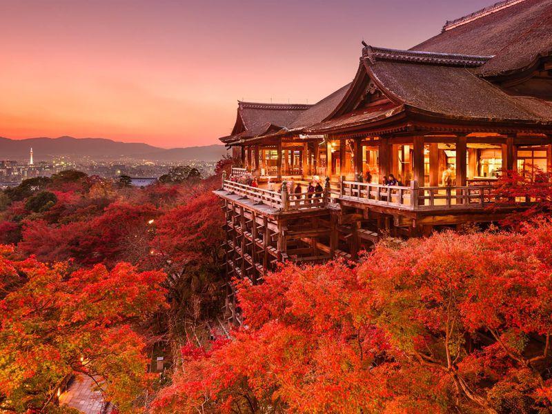 Croisière haut de gamme au Japon